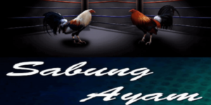 Daftar Service Sabung Ayam Online 2021